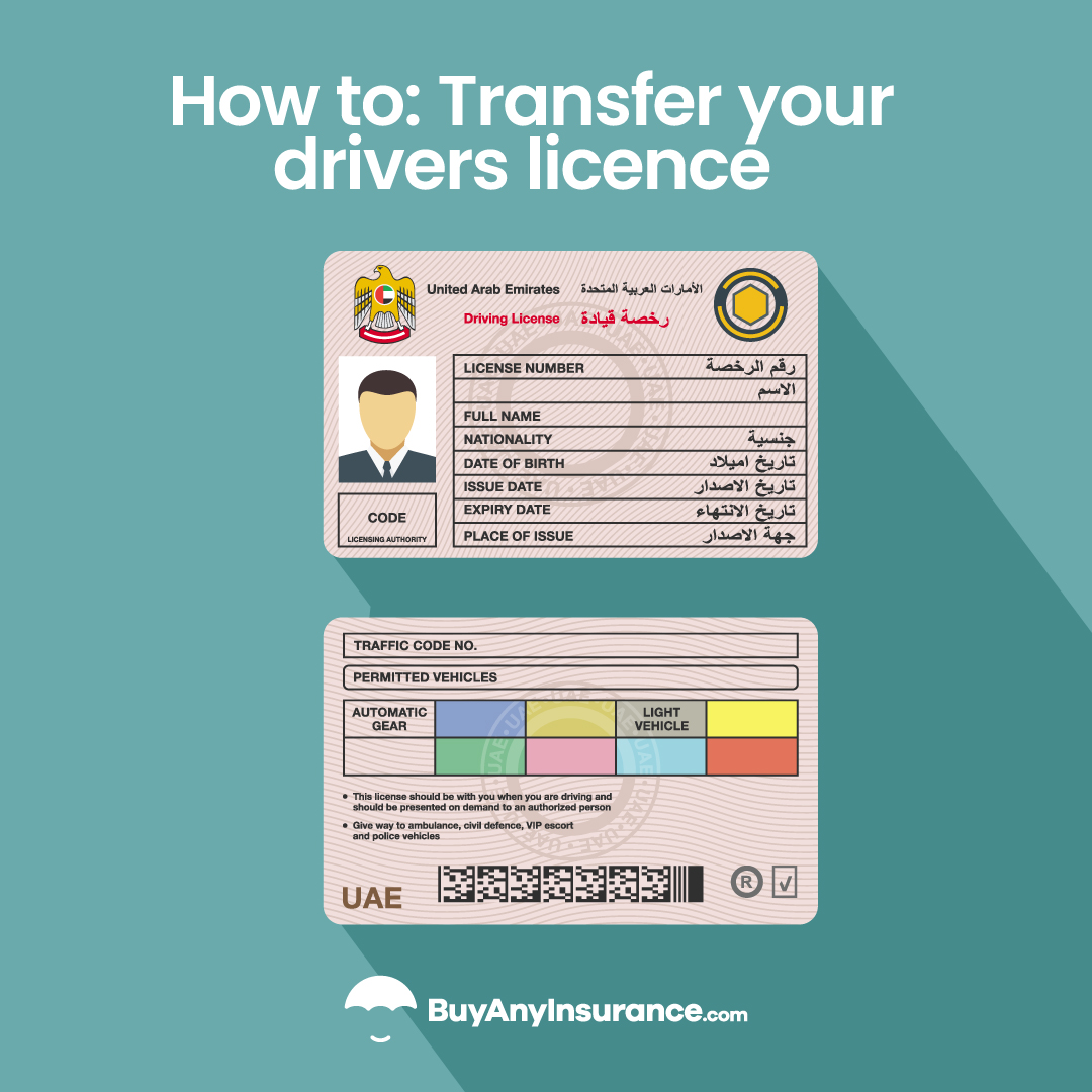 How to transfer your drivers licence